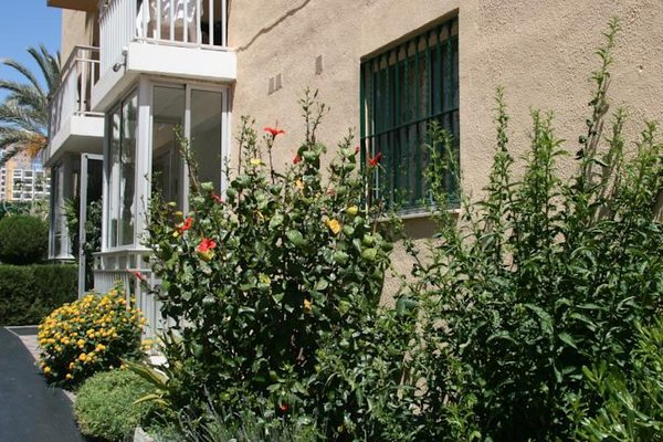 Apartamentos Palm Court - фото 19