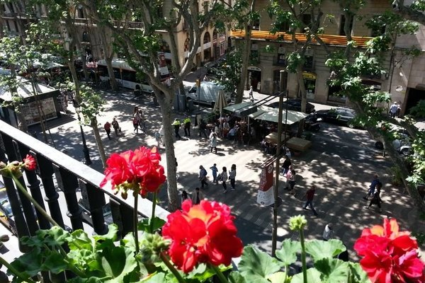 Boutique Apartments Barcelona LCL - фото 22