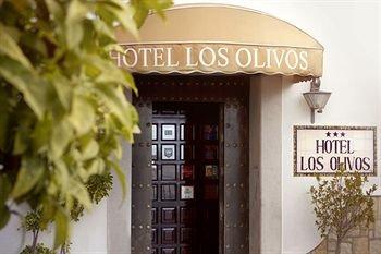 Hotel Los Olivos - фото 17