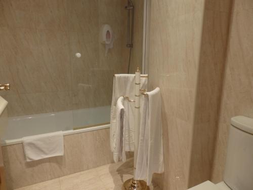 Hotel Aranda - фото 9