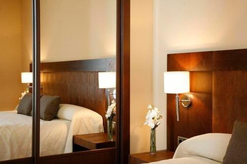 Hotel Villa de Aranda - фото 1