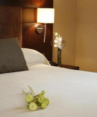 Hotel Villa de Aranda - фото 2