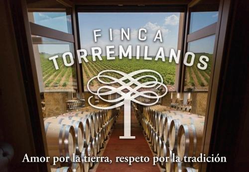 Hotel Torremilanos - фото 12