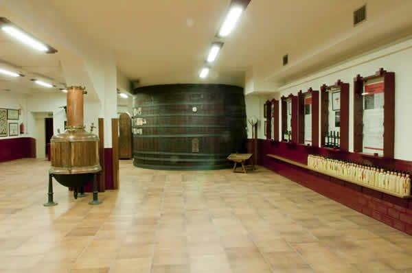 Hotel Palacios - фото 19