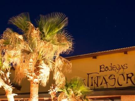 Hotel Bodegas Viсasoro - фото 23