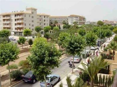 Apartamentos Albir Confort - Estrella - фото 14