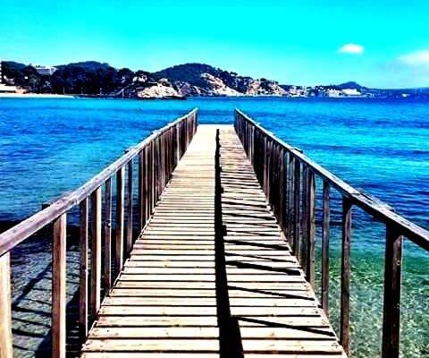 Apartamentos Petit Blau - фото 14