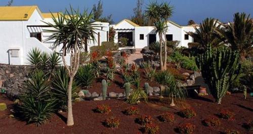 Fuerteventura Beach Club - фото 18
