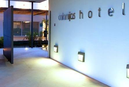 Calamijas Hotel - фото 13