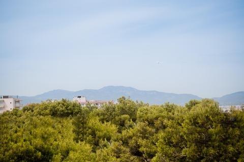 Hotel Palma Playa-Los Cactus - фото 18