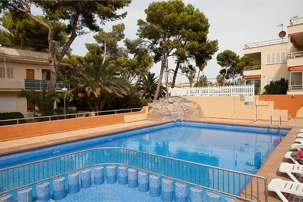 Hotel Palma Playa-Los Cactus - фото 19