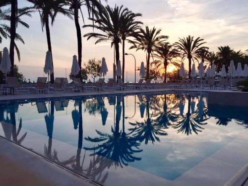 Hotel Flamingo - Только для взрослых - фото 20