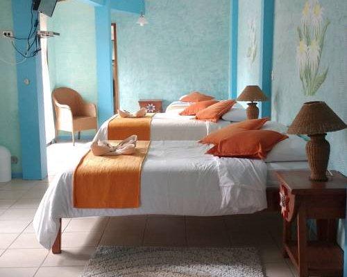 Hotel Miconia - фото 5