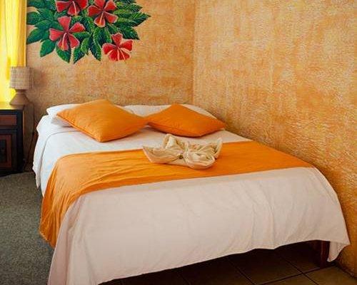 Hotel Miconia - фото 6