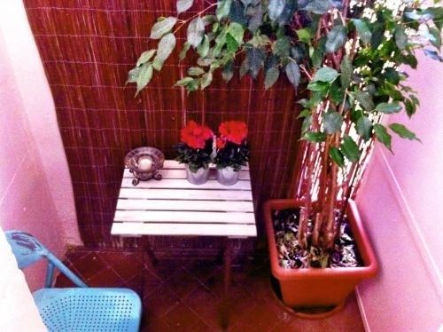 Casa del Mediterraneo - фото 14