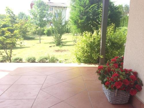 Summer Villa Boutique Varna - фото 20