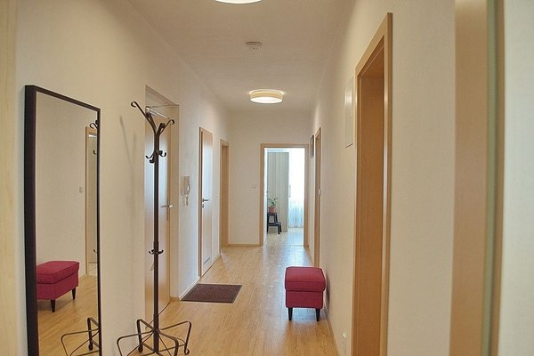 Bright spacious apartment - фото 5