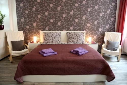 Apartment Zeyerova - фото 2