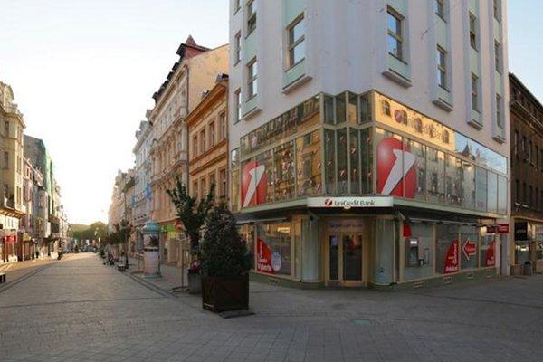 Apartment Zeyerova - фото 21