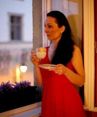 Apartment Zeyerova - фото 8