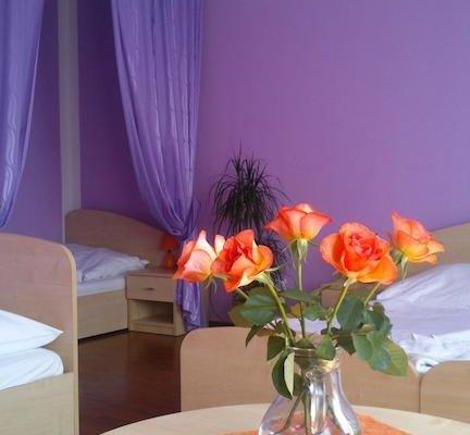 Hotel & Motorest V Udoli Zlateho potoka - фото 6