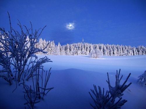 Dreilanderblick Ferienappartements - фото 2