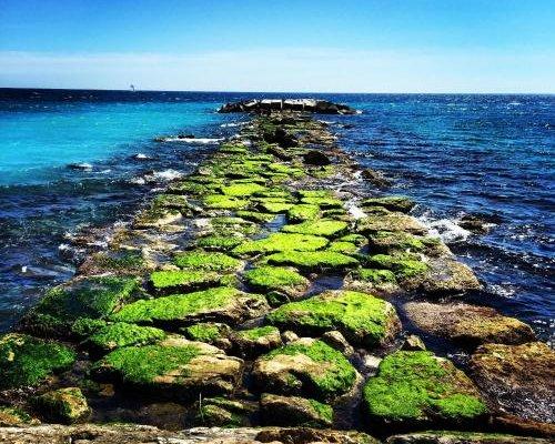 Aptos La Punta by Zercabeds - фото 2