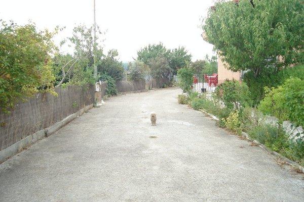 Casa Rural El Carmen II - фото 6