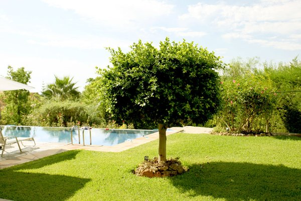 Villa Golf Los Arqueros - фото 18