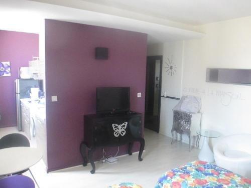 Appartement Comme Chez Soi - фото 8