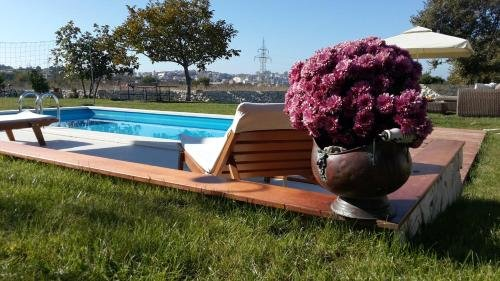 Luxury Villa Luminosa - фото 17