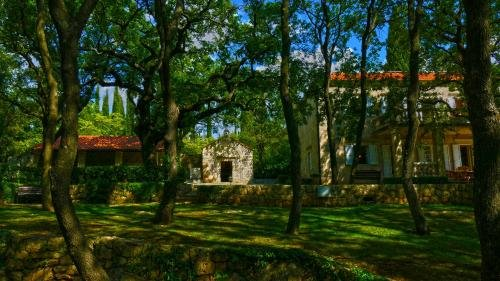 Villa Tereza - фото 23