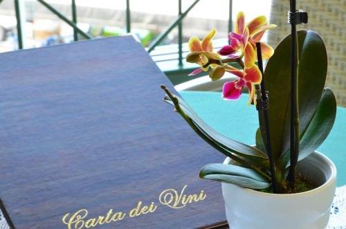 Hotel Villa Carlotta - фото 4