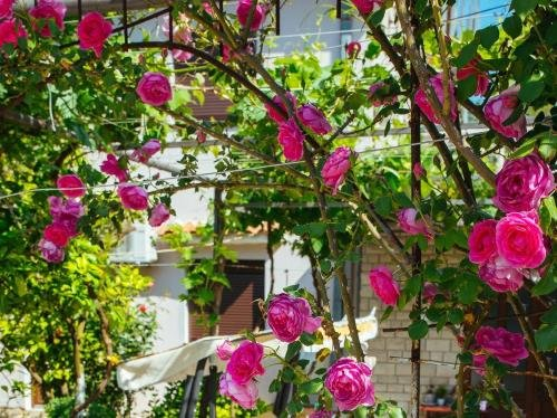 Apartments Azure Adriatic - фото 8