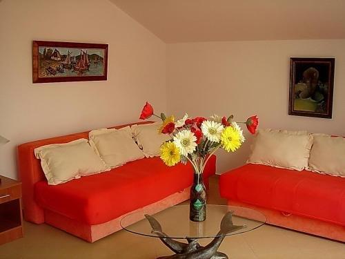 Apartments Odalovic - фото 16