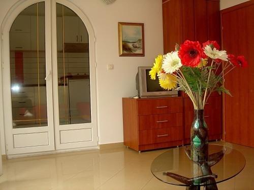 Apartments Odalovic - фото 17