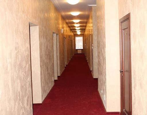 Отель Тосно - фото 20
