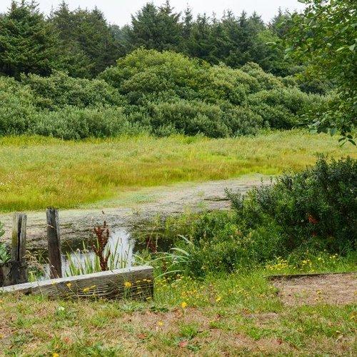 Photo of Surfcrest Vacation Condominiums, a VRI resort