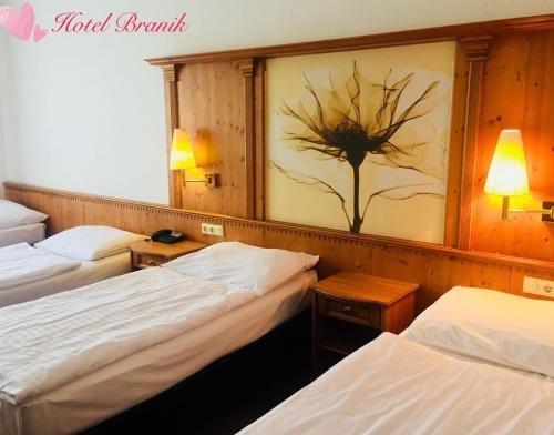 Hotel Branik - фото 50