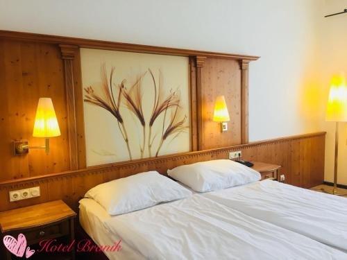 Hotel Branik - фото 5