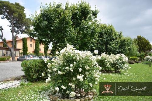 Casale Della Certosa - фото 16
