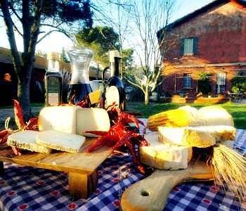 Tenuta Agricola Fonte Di Papa - фото 15