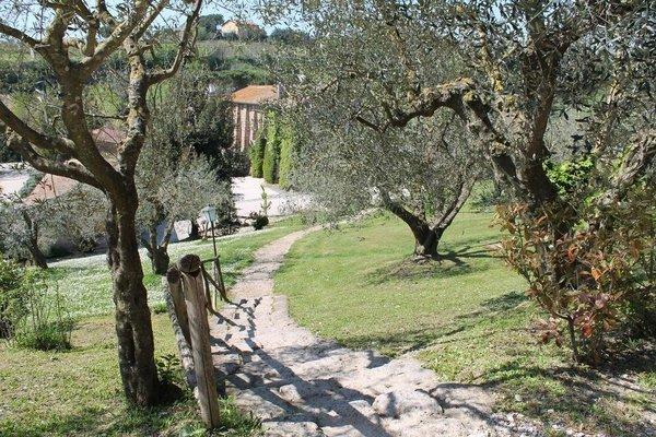 Borgo Di Tragliata - фото 17
