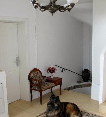 Old Vienna Apartments - фото 15