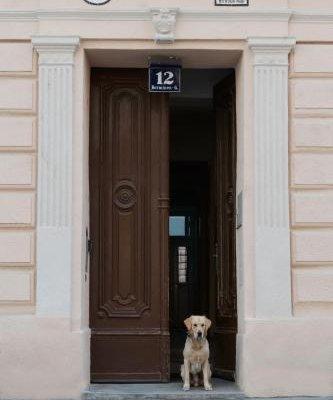 Old Vienna Apartments - фото 22