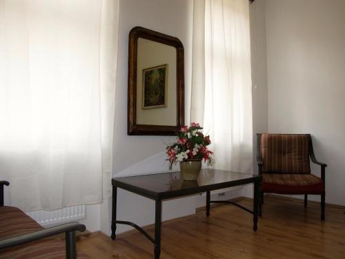 Old Vienna Apartments - фото 8