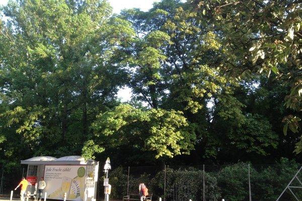 Vienna-Design-Apartments - фото 17