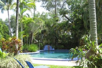 Pink Flamingo Resort