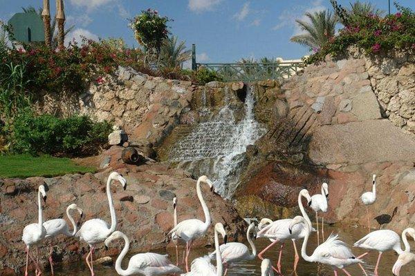 Hauza Beach Resort - фото 14