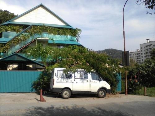 Гостевой Дом Татьяна - фото 1